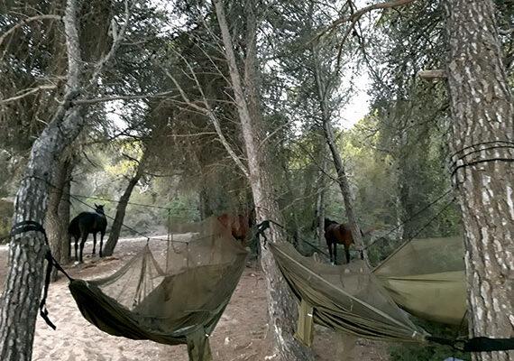 camping-salvaje-con-naturacavall-2