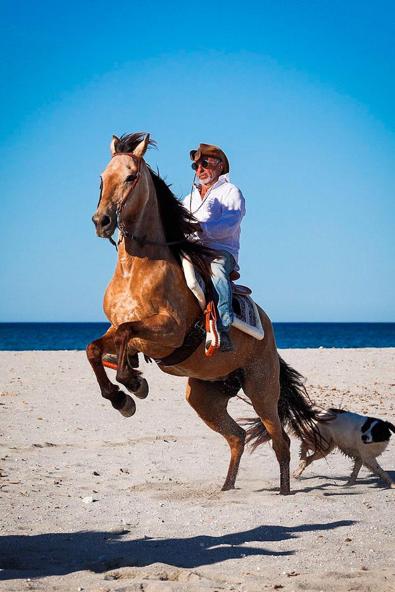 nuestros-caballos-naturacaval-1