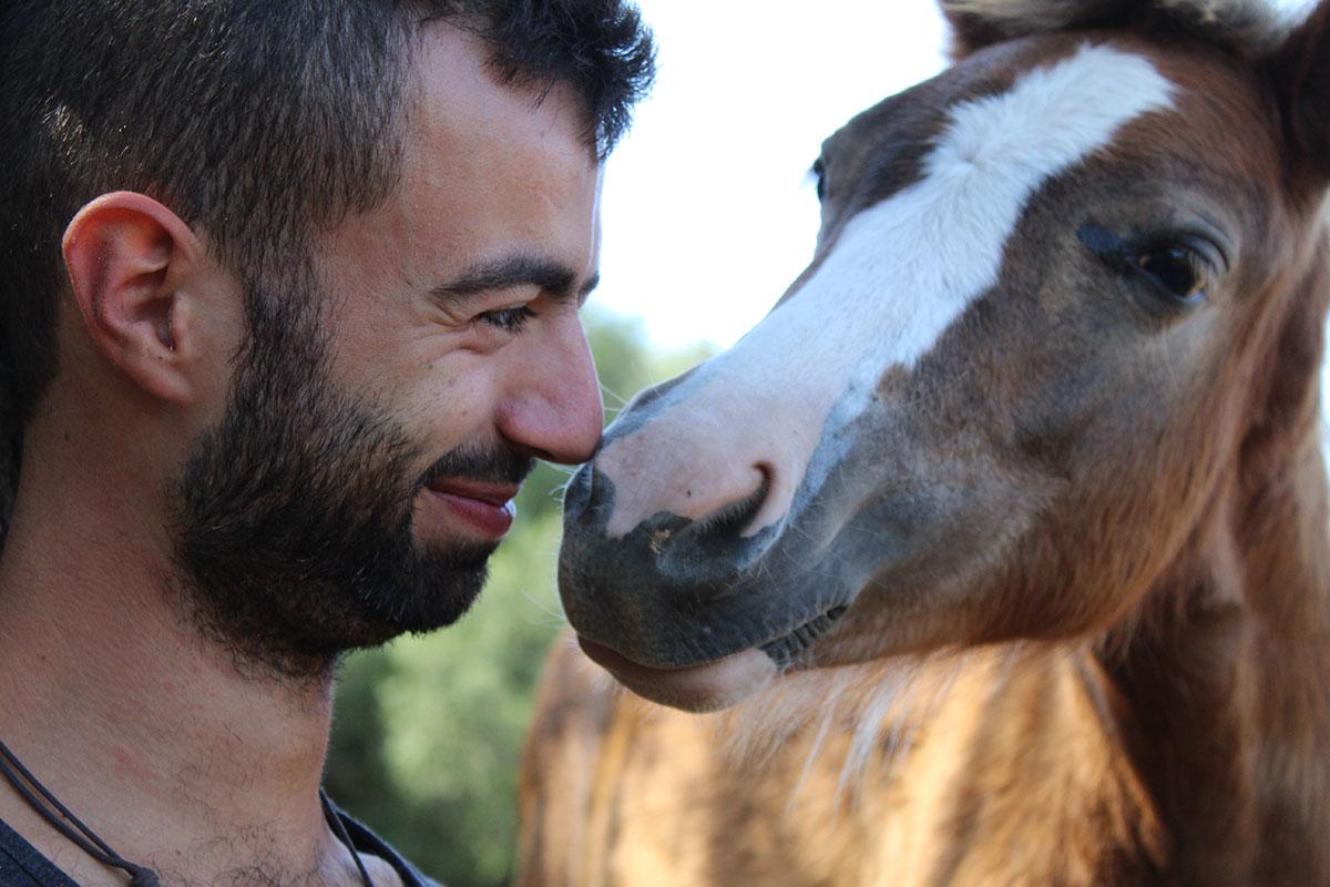 nuestros-caballos-naturacavall-2