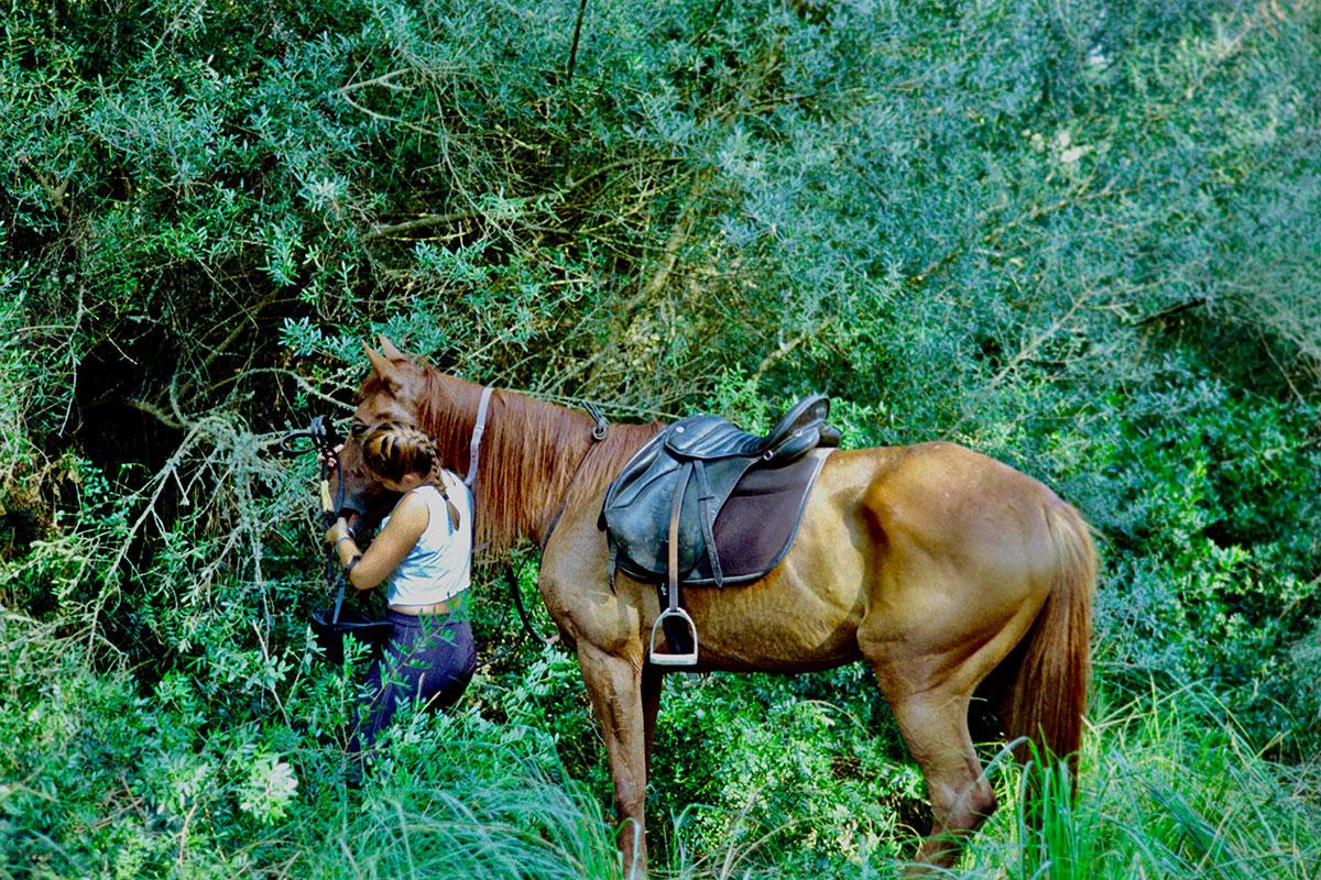 nuestros-caballos-naturacavall-4