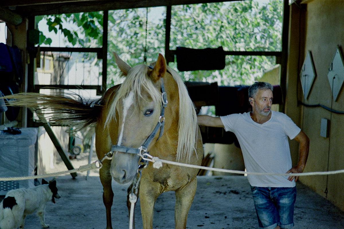nuestros-caballos-naturacavall-5